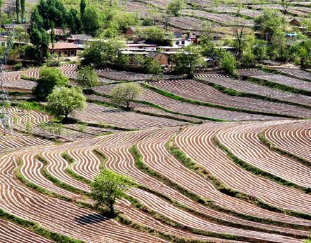 5月来陕西宜君看壮美的旱作梯田