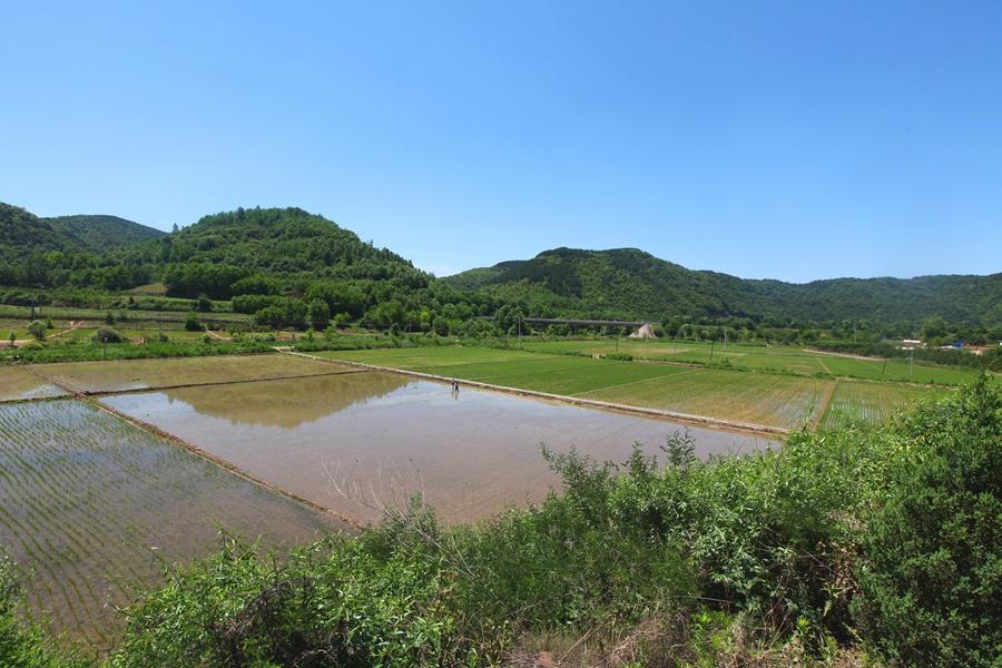"""富县川庄村""""第一书记""""乔建国成长记"""