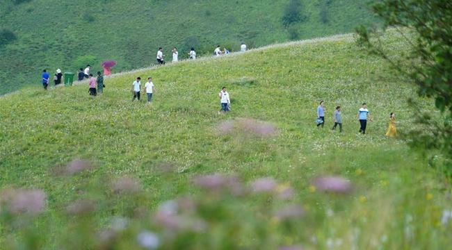 巴山秘境 神田草原