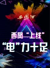 """西凤""""上线"""",""""电""""力十足"""