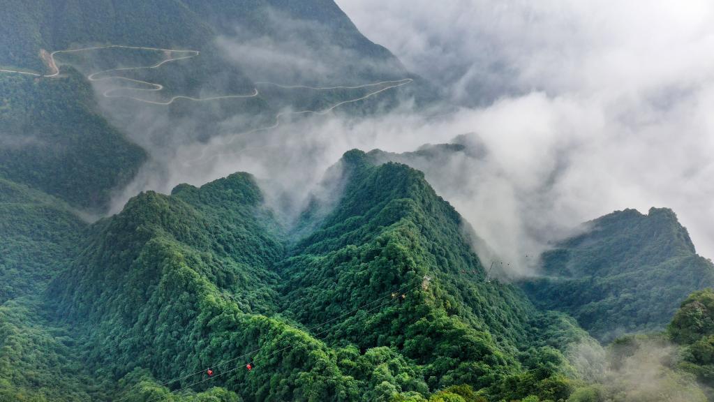 雲卷雲舒龍頭山